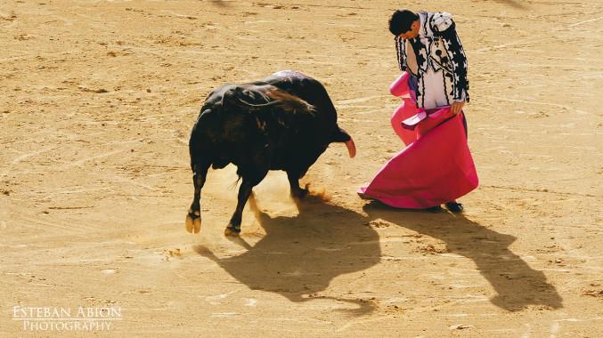 Una tarde en la Goyesca en Ronda