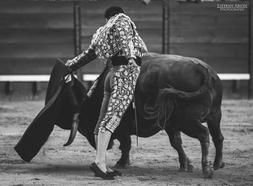 Toros Feria del caballo 2015 Jerez